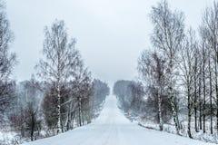 Die Sonne scheint das Gleis, Schnee, Holz Stockfoto