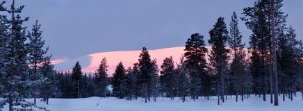 Die Sonne scheint das Gleis, Schnee, Holz Lizenzfreie Stockfotos