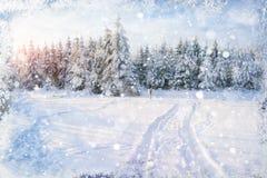 Die Sonne scheint das Gleis, Schnee, Holz Schöne Illustration der Farbe Hochres mit einem holida Stockfoto