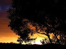 Die Sonne wird fast gegangen Lizenzfreies Stockbild
