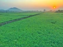 Die Sonnenaufgänge morgens Stockfoto