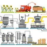 Die Sonnenblumenöl-Produktionsverfahrenstadien, Sonnenblumen und das Verpacken von Endprodukten erntend vector Illustrationen lizenzfreie abbildung