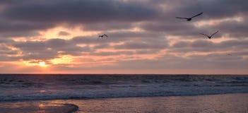 Die Sonneneinstellung über dem Pazifischen Ozean stockbild