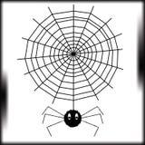 Die Spinne Stockfotografie