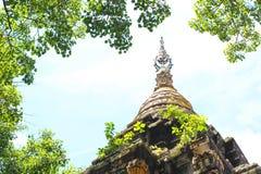 Die Spitze der thailändischen Pagode in der natürlichen Szene, arounded durch Bantambaumblatt Stockfotografie