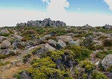 Die Spitze des Bergs Wellington in Tasmanien Australien stockfotos