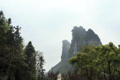 Die Spitze des Frosch-Mund-Berges stockbild
