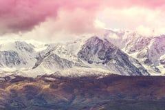 Die Spitzen des schneebedeckten Gebirgszugs unter dem rosa Himmel lizenzfreie stockfotografie