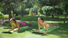 Die sportlichen Frauen der Eignung, die Planke tun, trainieren im Park stock video