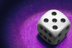 Die with spot light. On purple background Stock Image