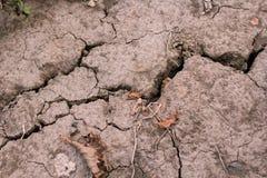 Die Sprünge im trockenen Boden dürre Stockfotos