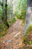 Die Spur in den Bergen Stockfotografie