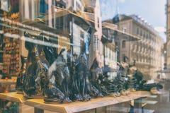 Die Stadtreflexion im Fenster mit Katzen Lizenzfreie Stockfotos