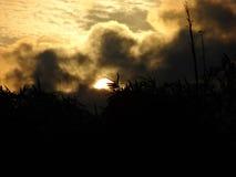 Die starke Sonne, die durch das Brüllen versenkt wird, bewölkt sich stockbilder
