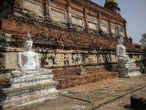 Die Statue alter Buddha und alte Pagode bei Wat Yai Chaimongkol, lizenzfreie stockbilder