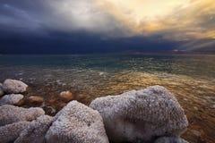 Die Steine abgedeckt durch salzige Vertagung Lizenzfreies Stockfoto