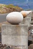 Die Steineier des fröhlichen Schachtes Stockbild