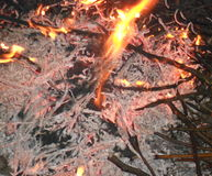 Die sterbende Feuernacht Stockfotografie