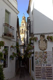 Die Straße der Blumen in Cordoba Stockfoto