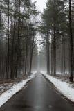 Die Straße der nebelhafte Waldherbst Stockbild