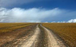 Die Straße, die zu Wiese führt Lizenzfreie Stockbilder