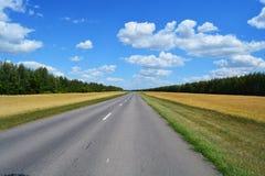 Die Straße durch das Feld lizenzfreie stockbilder