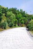 Die Straße durch das Holz Lizenzfreie Stockfotografie