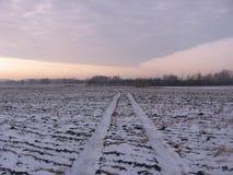 Die Straße durch das leere Feld, die Spuren des Autos stockbilder