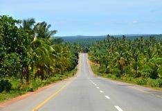 Die Straße durch den Dschungel. Lizenzfreies Stockfoto