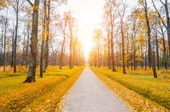 Die Straße durch den herbstlichen Park morgens Lizenzfreie Stockbilder