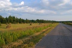 Die Straße entlang dem Feld Russland lizenzfreies stockbild