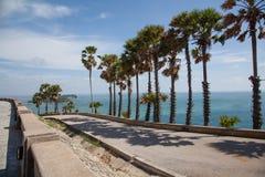 Die Straße entlang dem Meer und den Palmen Stockbild