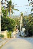 Die Straße im Dschungel Lizenzfreies Stockbild