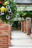 Die Straße im Garten mit Blumen Lizenzfreies Stockfoto