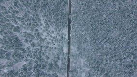 Die Straße im Winterwald stock footage