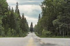 Die Straße um den Baum auf der Bogen-Tal-Allee Stockbild