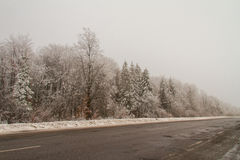 Die Straße von Colomiy zu Tismenitsa Lizenzfreie Stockfotos