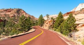 Die Straße in Zion Park lizenzfreies stockbild