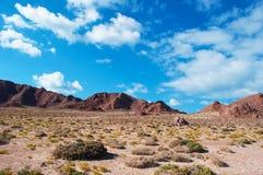 Die Straße zu Archer, der geschützte Sanddünebereich im Socotra, der Jemen Stockfotos