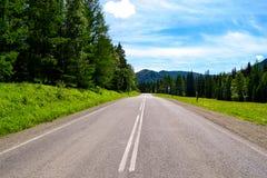 Die Straße zum Altai stockbild