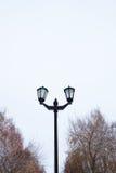 Die Straßenlaterne gegen den Himmel und die Bäume Stockfotografie