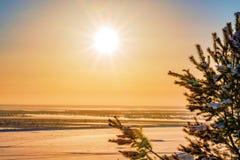 Die Strahlen der Abendsonne auf dem Himmel über dem Fluss im Winter mit einer Niederlassung des gezierten Schattenbildes, unschar Lizenzfreies Stockfoto