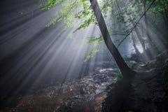 Die Strahlen der Sonne erleuchten die tiefe Schlucht Stockfotografie
