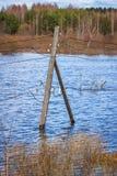 Die Strompfosten im Wasser Flut - der Fluss Mologa Lizenzfreie Stockbilder