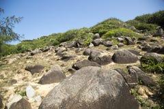 Die Struktur des Felsens Stockbilder