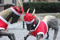 Die Symbole der Stadt von Posen mit den Weihnachtsdekorationen Lizenzfreie Stockbilder