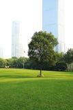 Die Szene der Shanghai-Stadt Stockfotos