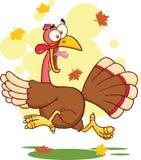 Die Türkei-Entweichen-Zeichentrickfilm-Figur Lizenzfreie Stockfotos