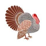 Die Türkei-Farbe Stockfotos