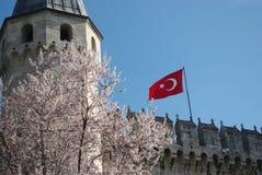 Die Türkei-Flagge auf Festungswand Stockbild